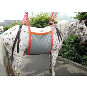 Lifting harness for horse