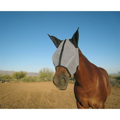 Fly mask with ears (X-Large)