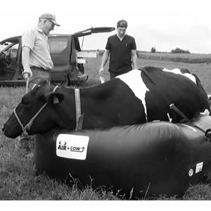 Air Cow - Lifting system